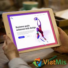VietMis - Công ty thiết kế website uy tín chất lượng cao tại Tp.HCM